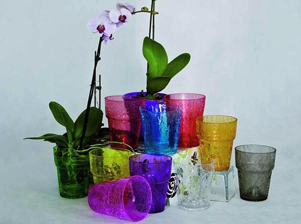 Кашпо из стекла для орхидей