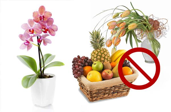 Не стоит размещать орхидею возле спелых фруктов или срезанны цветов
