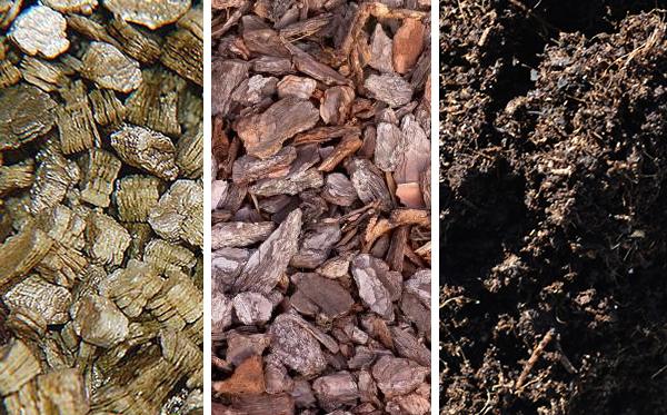 Состав грунта: вермикулит, сосновая кора, торфяная земля