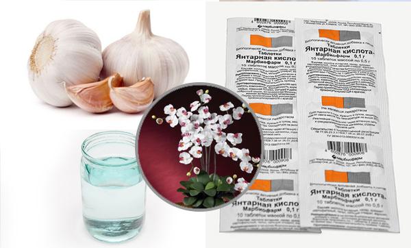 Усилить чесночный настой можно добавив 1 таблетку янтарной кислоты