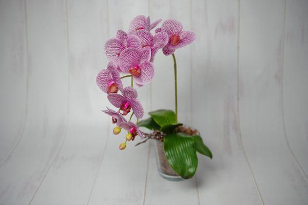 Листья орхидеи должны быть упругими